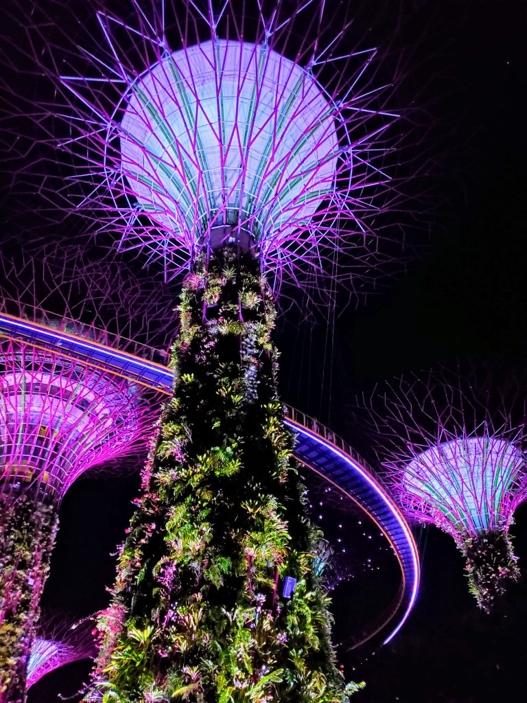 Singapore Gardens by the Bay Supertree Grove